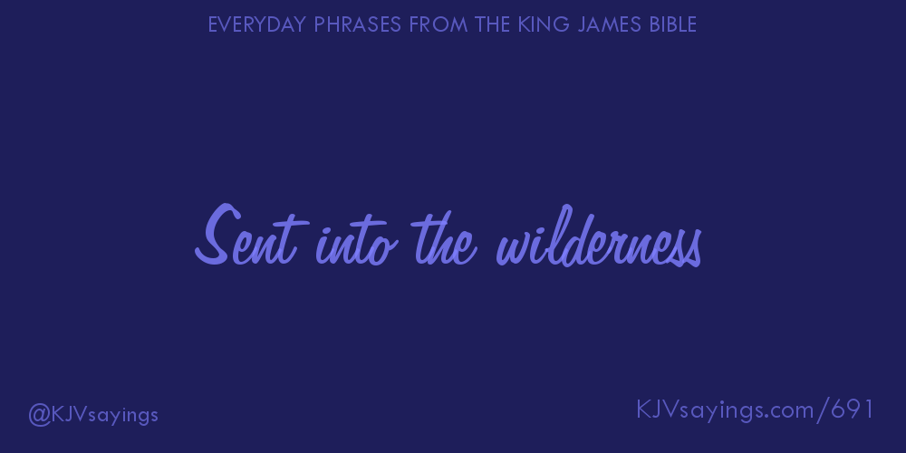 the wilderness and the phrase wild